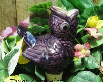 Ceramic Open Mouth Purple Bird Plant Tender or Water Feeder Spike for Indoor or Outdoor Potted Plants or Container Gardens Made in the USA