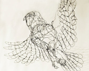 Barred Owl-Wire Drawing Sculpture Art