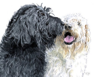 Labradoodle Love reproduction