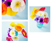 Flower photography - Set of 3 poppy photos - poppies, turquoise, yellow, purple, white, blue, bright and cheerful, summer decor, floral art