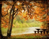 Tree Landscape Photo, river bank, fall tree leaves print, woodland, autumn photography, orange, red, green