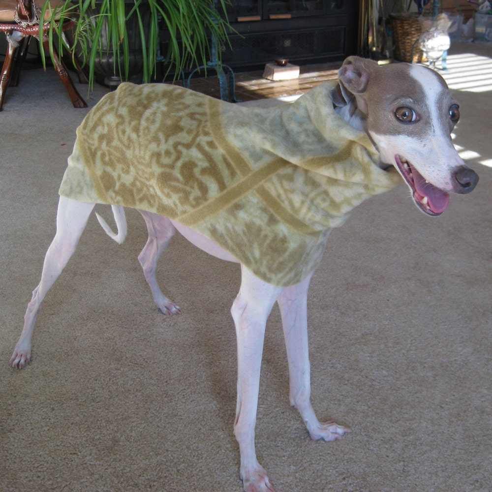 Small italian greyhound dog coat digital print at home sewing zoom bankloansurffo Images