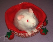 Little Albino Guinea Pig Plushie