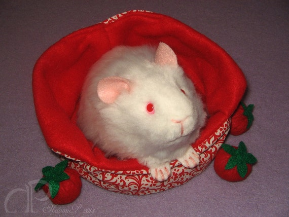 Reserved for oliviaamey53 - Little Albino Guinea Pig Plushie