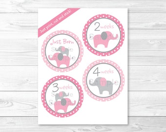 Pink Elephant Monthly Milestone Stickers / Iron Ons / Printable INSTANT DOWNLOAD