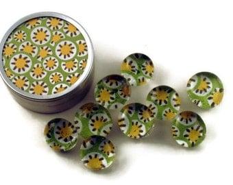 Glass Push Pins  Thumb Tacks Cork Board Pins in Lemon Lime   with Gift Tin (PT49)