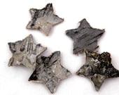 5 Birch Bark Stars