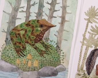 Chile Darwin's Frog original watercolor painting, Charles Darwin, extinct animals, frog art, amphibians