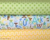 Snips & Snails, Simply Sweet and Basics Collections Specialty Bundle-  2 yards total - on sale