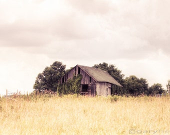 Little Old Barn in a Field, Minimalist, Rustic Landscape Photography, Soft Creamy Color, Farm and Country Decor