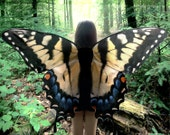Oversized Swallowtail Butterfly Costume Wings - Made to Order - Butterfly Halloween Costume