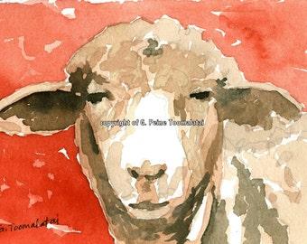 Lamb art PRINT 8.5 X 11 paper size lamb painting sheep painting portrait lamb sheep watercolor PRINT lamb art sheep art lamb in red