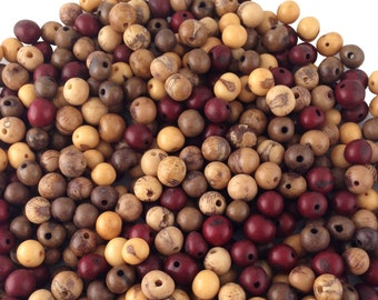 Earth Tones Acai Beads Mix, 100 Beads / Natural Eco Friendly Beads from the Amazon, Boho Beads, Yoga, Renewable Seeds / Brown, Red, Natural