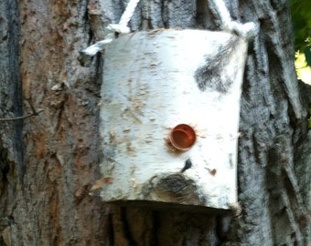 Natural Birchwood Plug Suet/Seed Bird Feeder
