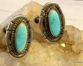 Blue Turquoise Earrings Sterling Silver Screw On Backs Native American