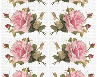 Instant Digital Download Cottage Pink Roses Flowers Catherine Klein Vintage Era Transparent Background PNG - U Print ECS