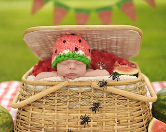 Watermelon HAT and ANTS  newborn photography prop