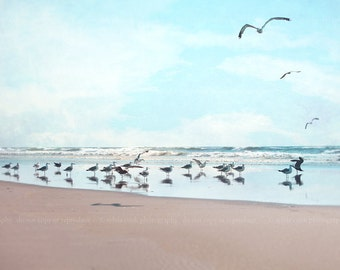 "Ocean photography,Beach home decor ""The Gathering"" ocean,seashore,summer decor,seagulls,waves,calming,landscape"