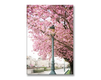 Spring in Paris Photo on Canvas, Fine Art Gallery Wrapped Canvas, Large Wall Art, French Home Decor