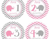 FREE GIFT, PERSONALIZED Baby Monthly Stickers Milestone Month Baby Sticker Photo Prop Elephants Pink Grey Chevron