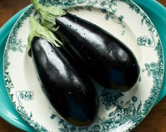 Eggplant Seeds Florida High Bush