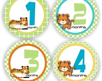 Baby Stickers - Baby Month Stickers - Baby Boy Monthly Stickers - Baby Shower Gift - Tiger Baby Month Stickers