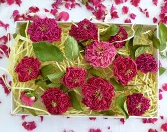 Dry Miniature Roses,Wedding Confetti, Decor, Wedding Favor, Dry Flowers, Rosebud, Table Decor, Wedding Favor, Cradt Supply, 12 Dry Red Roses