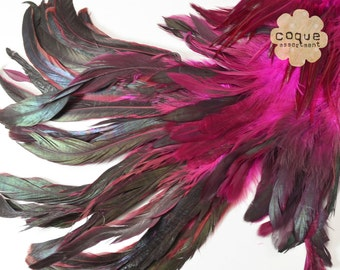 120pcs+- Rooster Coque Feathers Assortment, sadle, schlappen, and tail, three different types of rooster feathers- HOT PINK