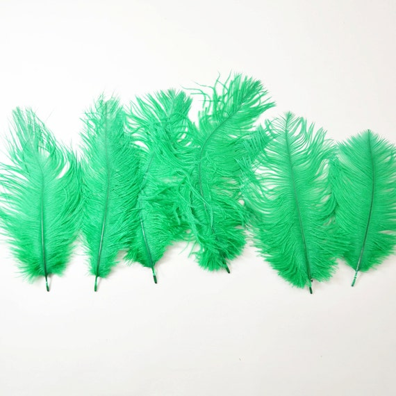 "Petite Ostrich Drab Feathers - Kelly Green, 4-8"" (6pcs)"