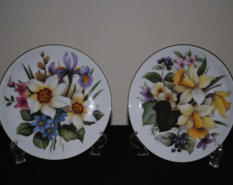 Set of Two Plates St. Martin Email de Limoges