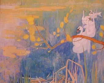 Wild Swans at Coole Perfume Oil - Orris Root, Autumn Orchids, Ferns, Aquatics - 5 ml.