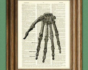 Human HAND BONES Anatomy illustration beautifully upcycled dictionary page book art print