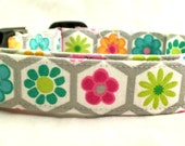 Happy Go Lucky Hexagons with Multi Colored Flowers on Gray Dog Collar Grey