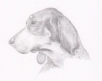 Bluetick Coonhound Note Cards - Gift Set of Eight - Free Shipping US - Original Pencil Art Design - Desert Impressions