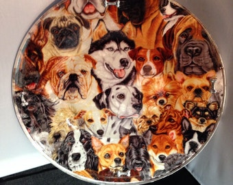 Dogs puppies canine pet animal glass plate