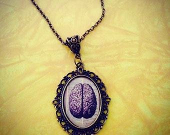 Brains!! 25 x 18mm vintage anatomy picture of Brains in a bronze pendant necklace zombies