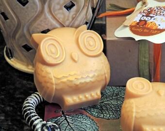 Pumpkin OWL SOAP Gift Box Fall Hostess Birthday Co-Worker Teacher Thank You Gift