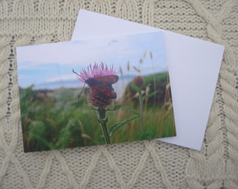 Irish Landscape Photography Greetings Card Note Card