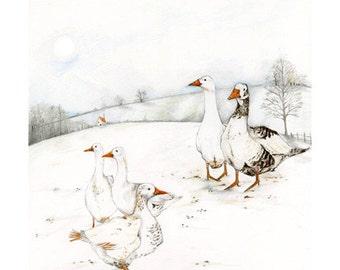 Geese bird print 8x11 illustration bird print