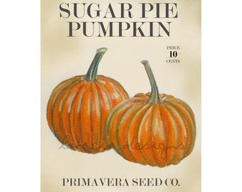 Pumpkin Art - Fall Art - Autumn Art - Garden Art - Garden Decor - Pumpkin Seed Packet - Fall Decor - Autumn Decor - Gardening - Art Print