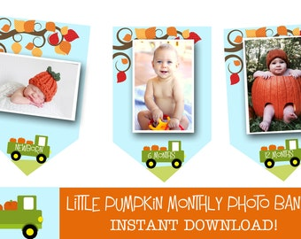 Pumpkin First Birthday Banner Month Monthly Photos  - Truck Harvest Leaves Fall INSTANT download Invitation to match in my shop