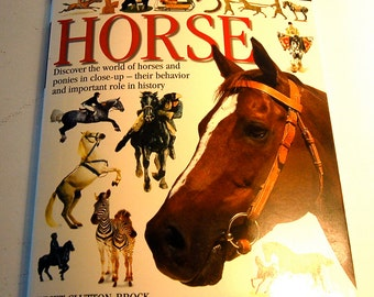 Horse Book DK Children's Book, Loaded with Illustrations