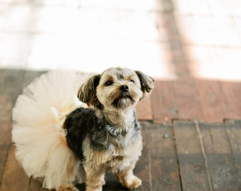 Super Fluffy Custom Dog tutu choose your colors SEWN xxxs to xxxl