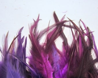 40 Feathers assorted purple saddle hackles 3 to 6 inches craft feathers k1174