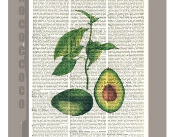 Antique VEGETABLES/Avocado Print on Vintage Dictionary Book page - Kitchen decor, Botanical art, Artwork  -Upcycled Book Print
