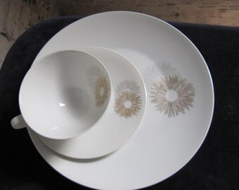 SALE This is for ONE place setting of Sunburst by Rosenthal