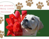 Dog Christmas Card Labrador Puppy with Large Red Bow Animal Photography