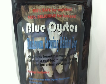 Blue Oyster Mushroom Growing Habitat Log pre inoculated kit organic