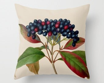 Throw Pillow Cover - Berries Fruits Vintage Ephemera - 16x16, 18x18, 20x20 - Pillow case Original Design Home Décor by Adidit