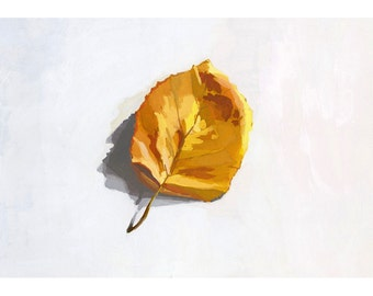 "5x7"" print - leaf still life - ""Fall Leaf"""